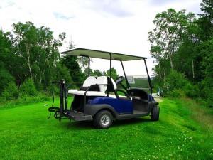 gront kort golfbil 300x225 Grönt kort golf